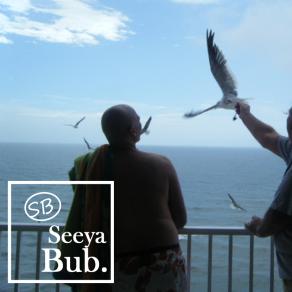 dad-and-seagulls-with-seeya-bub-logo