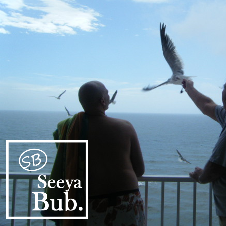 Dad and Seagulls with Seeya Bub Logo
