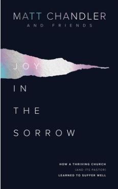 Joy In The Sorrow